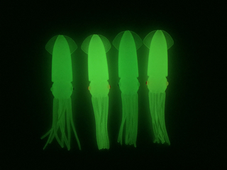 Wholesale soft glowing squid fishing lure